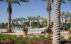 valencia-belcaro-palm-trees-and-pool