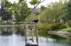 blakbird-and-lake-1