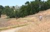 Valencia Summit-park-walker