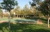 Valencia Woodlands basketball court