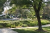 Valencia Woodlands landscaping