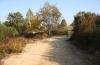 Valencia Woodlands natural park and walk area