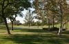Valencia Woodlands park area