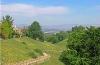 summer-parkland-view